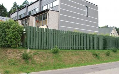 Tvora Viktor, dažyta žaliai,  statiniai 19x140x1800 mm, skersiniai  30x70x1800 mm