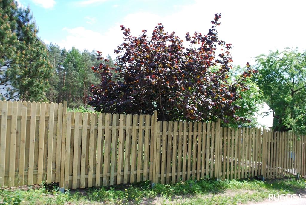 Statinių tvora  150x200 cm, statiniai 19x90x1500 mm,   skersiniai 30x70x2000 mm