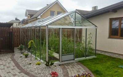 Šiltnamis Ventus, 309x 604 cm, danga – 4 mm  grūdintas stiklas – vietoj Klaipėda